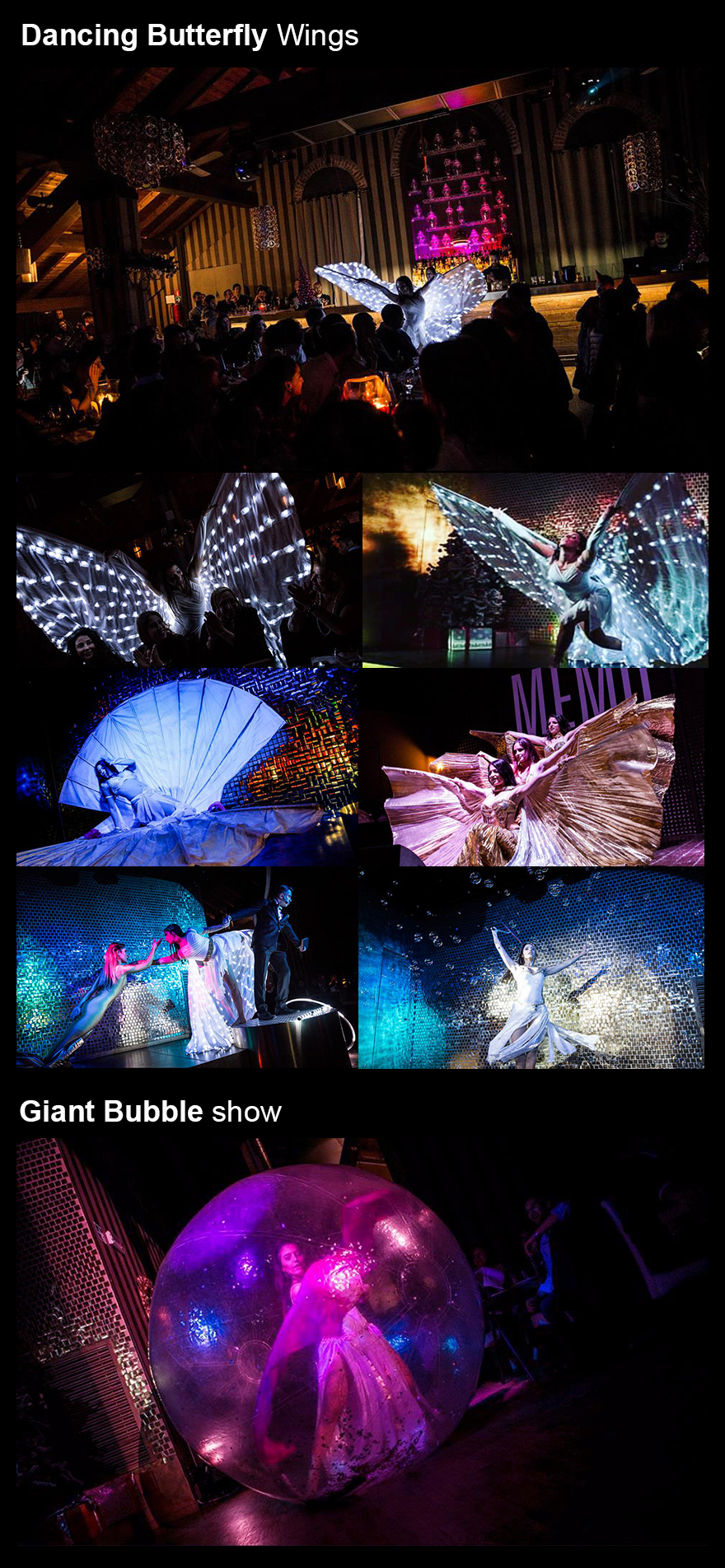 butterfly-bubble-show